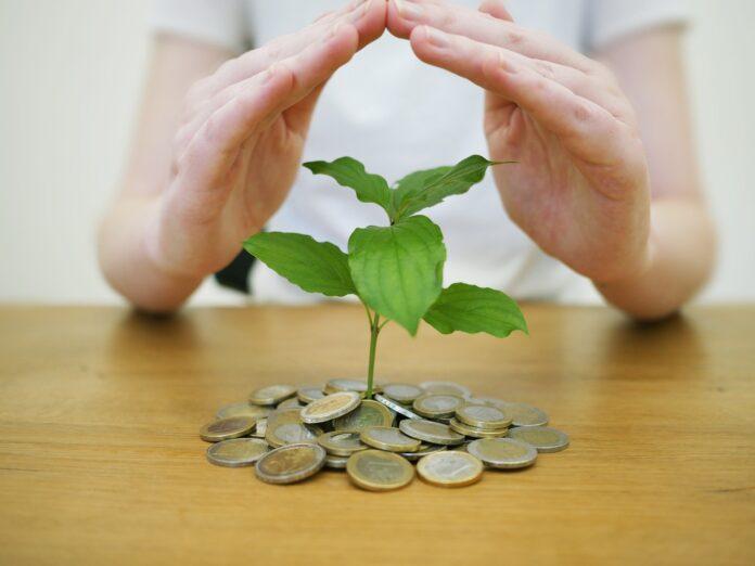 Investimentos a longo prazo: quais as melhores opções?